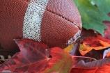 fall-sports